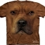 The Mountain Big Face Pitbull Dog T-Shirts thumbnail 1