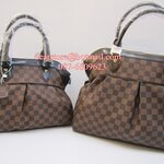 Louis Vuitton Canva Trevi Damier